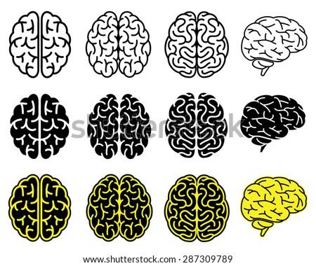 Set of human brains. Vector illustration.