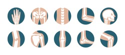Set of human joints and bones. Vector knee, leg, pelvis, scapula, skull, elbow, foot and hand icons. Orthopedic and skeleton symbols on white background
