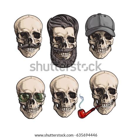 set of human skull bones with
