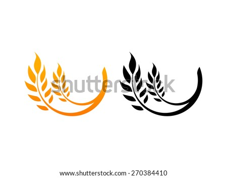 set of icons  ears of wheat