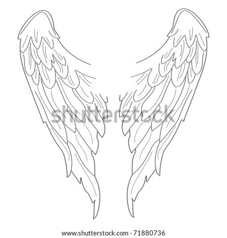 Set of illustrated wings. Easy to edit and scale to any size.