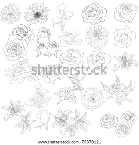 Set of  in hand drawn style roses. Vector EPS 10 illustration.