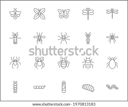 set of insect and bug line