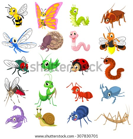 set of insect cartoon character