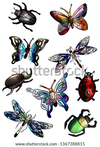 set of insects  red  pink