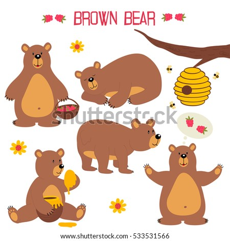 set of isolated brown bear