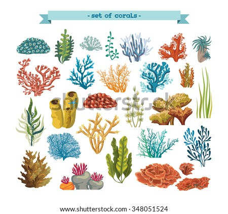 set of isolated colorful corals