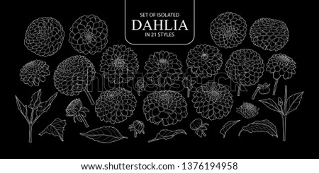 Set of isolated Dahlia in 21 styles. Cute hand drawn flower vector illustration only white outline on black background.