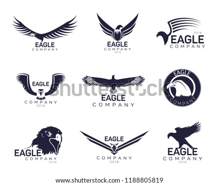 Set of isolated eagles icons for company branding or hawk with feather and beak for insignia. Bird with wings for advertising emblem or heraldic head of falcon for label. Brand and ads theme