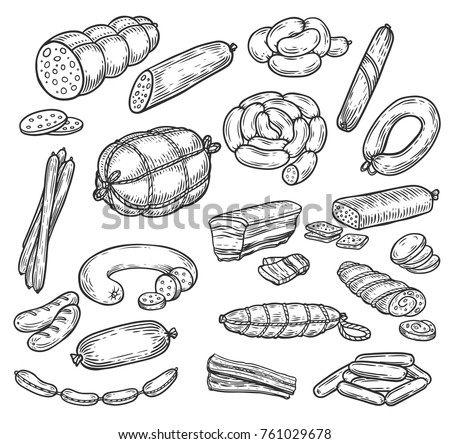 Set of isolated meat product sketches. Meatloaf and roulade steak, pork or swine sausage, sliced wurst or kielbasa, bacon. Butcher shop or meat market, restaurant and meal, nutrition theme