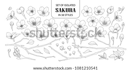 set of isolated sakura in 38