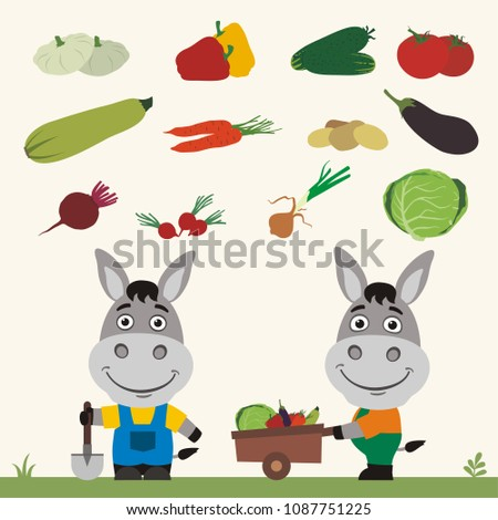 Set of isolated vegetables: squash, peppers, cucumbers, tomatoes, zucchini, carrots, potatoes, eggplant, beet, radishes, cabbage, onion. Two funny donkeys farmers.