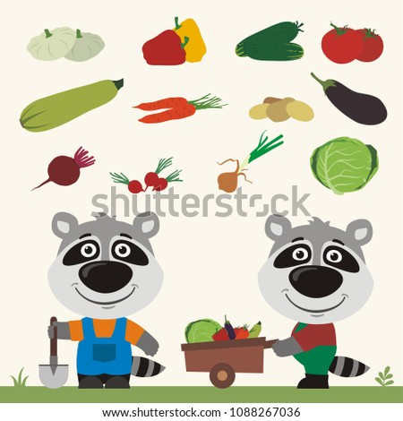Set of isolated vegetables: squash, peppers, cucumbers, tomatoes, zucchini, carrots, potatoes, eggplant, beet, radishes, cabbage, onion. Two funny raccoons farmers.