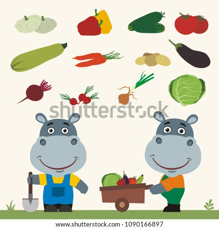 Set of isolated vegetables: squash, peppers, cucumbers, tomatoes, zucchini, carrots, potatoes, eggplant, beet, radishes, cabbage, onion. Two funny hippos farmers.