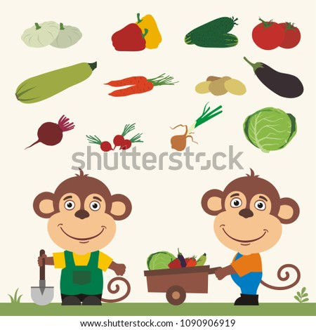 Set of isolated vegetables: squash, peppers, cucumbers, tomatoes, zucchini, carrots, potatoes, eggplant, beet, radishes, cabbage, onion. Two funny monkeys farmers.