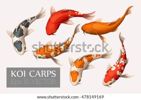 set of koi carps