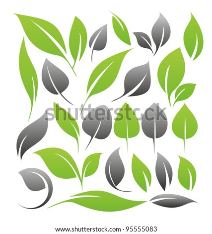 Set of leaf symbols, icons, shapes, logos and design elements. Green leaves silhouettes collection.