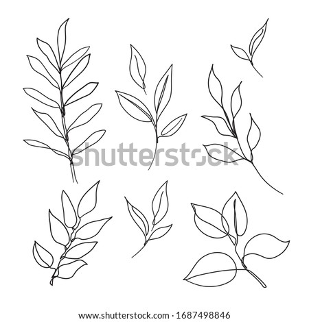 Set of leaves continuous line drawing art. Abstract minimal botanical art. Foto d'archivio ©