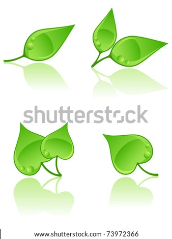 Set of leaves logos. Vector illustration.