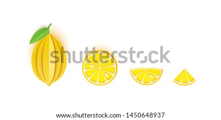 Set of lemon sliced paper citrus fruit sliced whole, triangular and round slices, design for any purpose. Summer yellow lime juicy food. Vector card 3d illustration. Tropical papercraft layers fruit.