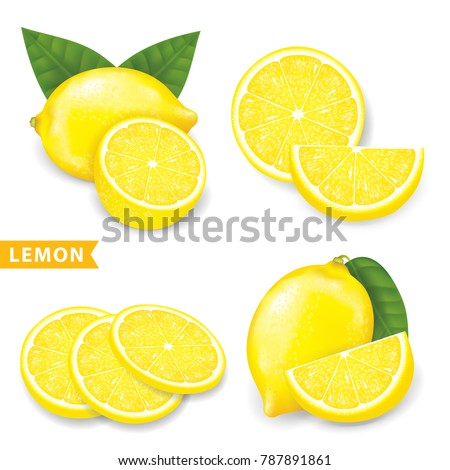 set of lemon vector illustration