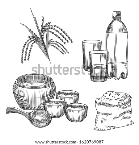 Set of makgeolli. Korean traditional alcohol drink rice wine. Bag of rice, plastic bottle, glass, ceramic ware, branch of rice isolated on white background. Vintage engraved style. Vector illustration