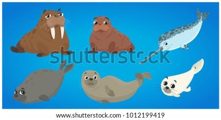 set of marine mammals. ocean...
