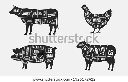 Set of Meat diagrams. Cuts of meat. Cow, Chicken, Pig and Sheep silhouette isolated on white background. Vintage Posters for butcher shop. Vector illustration