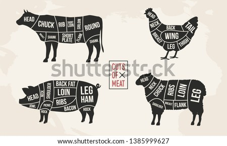 Set of Meat diagrams. Cuts of meat. Cow, Chicken, Pig and Sheep silhouette. Vintage Posters for groceries, butcher shop, meat store. Vector illustration