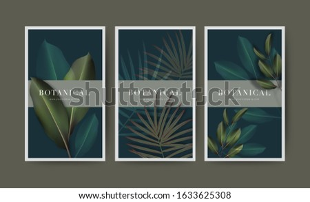 Set of minimal banner for branding packaging. Tropical summer plant and leaf with shadow background. For spa resort luxury hotel, yoga, beauty, cosmetic, organic texture. vector illustration.
