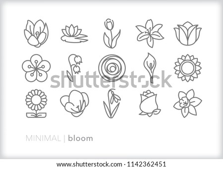 set of 15 minimal bloom icons