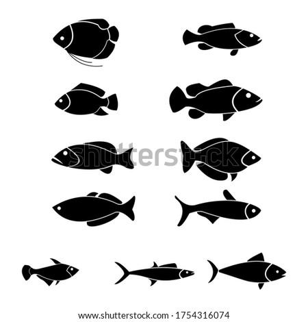 set of 11 minimal fish icons