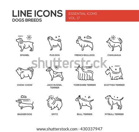 Set of modern vector plain line design icons and pictograms of domestic dogs breeds. Spaniel, bulldog, chihuahua, chow-chow, jack russel terrier, yorkshire, scottish terrier, badger, spitz, pitbull