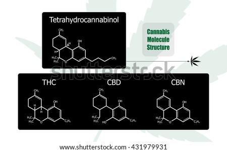 set of 4 molecular structure