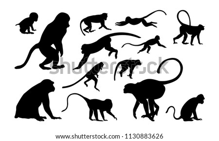 Set of Monkey Silhouette vector illustration