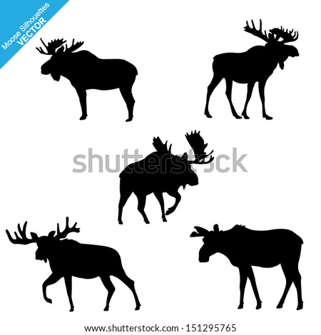 Set of Moose Silhouettes. Vector Images