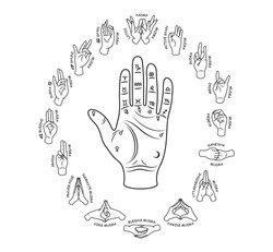 Set of Mudra hands. Collection of yoga for fingers. Healthy exercise for hands people. Reiki technique. Vector illustration of yoga sign on white background.