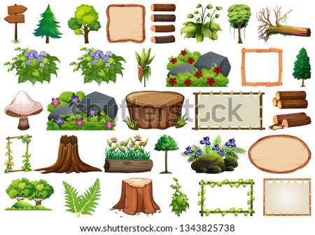 Set of nature element for decor illustration