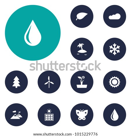 Set of 12 nature icons set. Collection of electric mill, snowflake, plant and other elements.