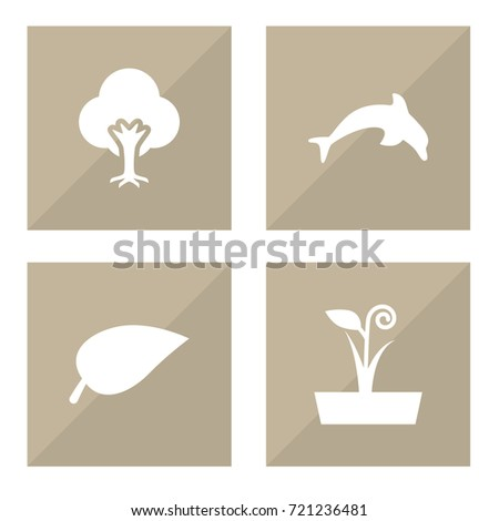 Set Of 4 Nature Icons Set.Collection Of Tree, Flowerpot, Grampu And Other Elements.