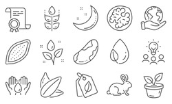 Set of Nature icons, such as Safe water, Moon stars. Diploma, ideas, save planet. Leaf dew, Sunflower seed, Cocoa nut. Bio tags, Gluten free, Brazil nut. Leaves, Plants watering, Animal tested. Vector