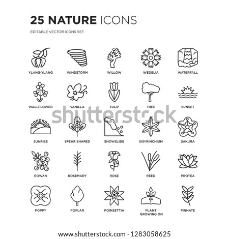 set of 25 nature linear icons