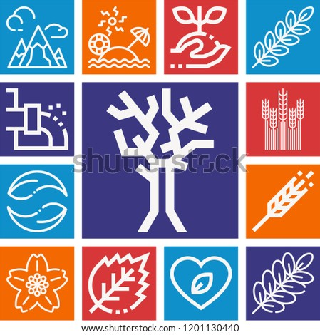 set of 13 nature outline icons