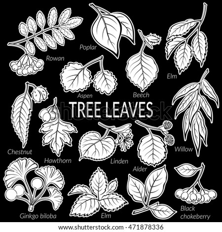 set of nature pictograms  tree