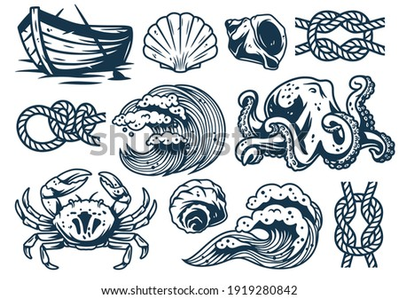 Set of nautical elements for marine design, including sea or ocean wave, crab, boat, octopus, seashell, wave, knot, seafood and mollusk