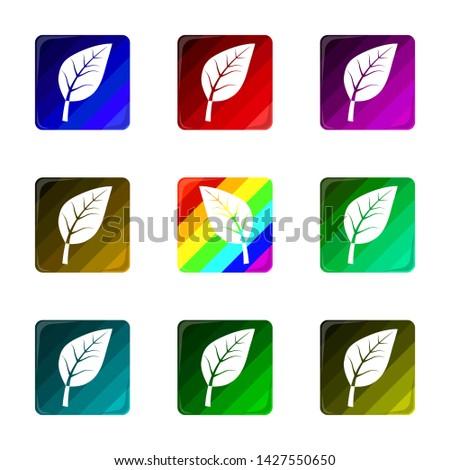 Set of nine colorful track plant emblems. Nature emblems, badges and logo patches.