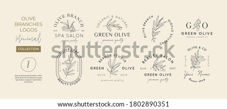 Set of Olive branch with leaves logo design template in simple minimal linear style. Abstract Feminine Vector Signs with Floral Illustration for Beauty Studio, SPA, Organic cosmetics, creative studio