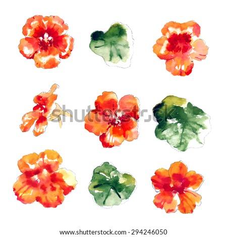 set of orange watercolor