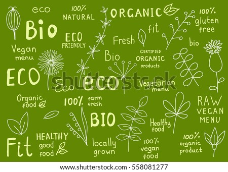 Set  of  organic, fit, natural, fresh,  bio, eco, healthy food labels.  Retro badges with floral elements  for vegan cafe, restaurant  menu, farm market , products packaging. Hand drawn vector signs.
