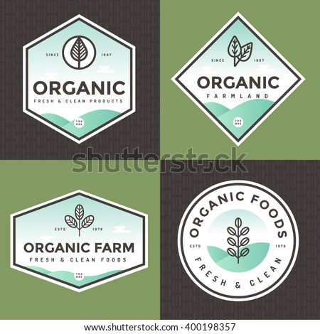 Set of organic food logo, badges, banners, emblem with pattern. Package design. Clean food. Natural food, healthy fresh food, Vegan, Farm products. linear and flat style. Vector illustration.